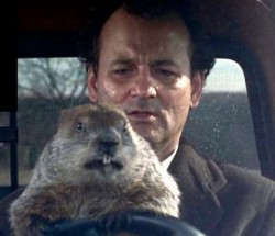 Don't Drive Angry! (Groundhog Day, 1993)